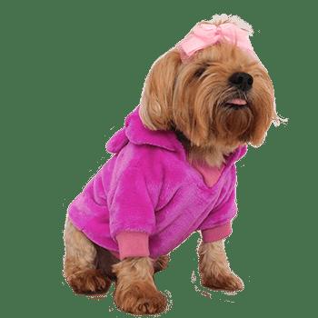 Little Neru Pet Boutique Ropa Y Accesorios Para Mascotas