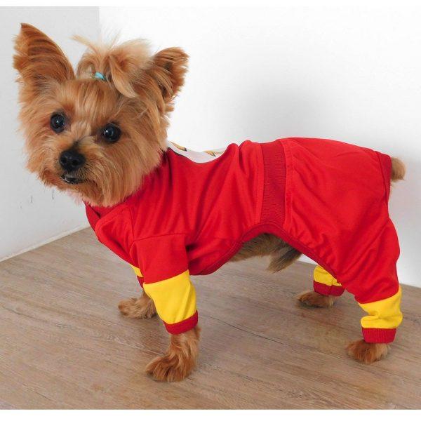 Disfraz de Flash para perrito