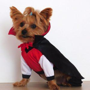 Disfraz de conde Dracula para perrito