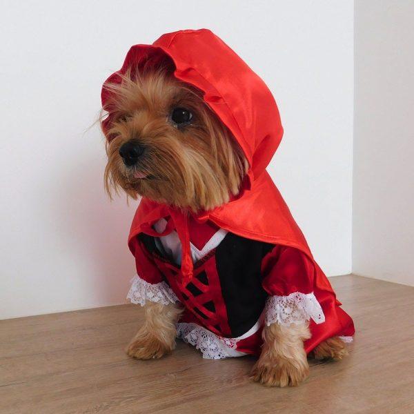 Disfraz de Caperucita Roja para perro