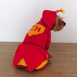 Disfraz de Chapulin Colorado para perro