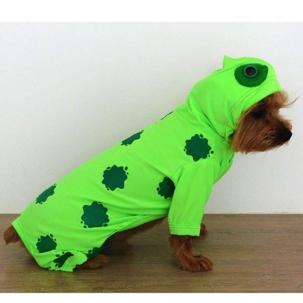 Disfraz de Sapo para perrito