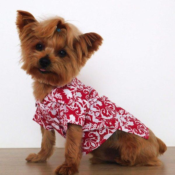 Camisa sport en algodón para perrito.